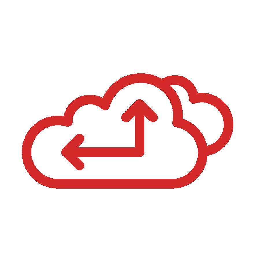 NLS-TechnologyIcons_Data Management